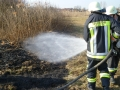 Brand einer Hecke/Ackerfläche 4