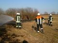 Brand einer Hecke/Ackerfläche 3