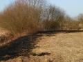 Brand einer Hecke/Ackerfläche 6